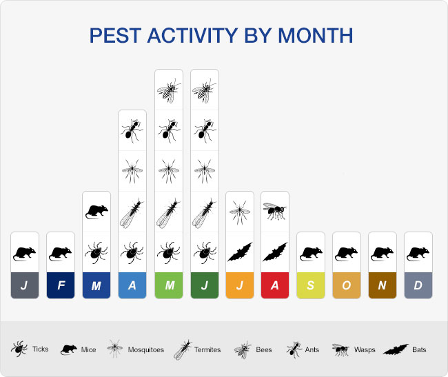 CT Pest Activity by Month